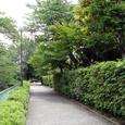 駒井邸の前の道